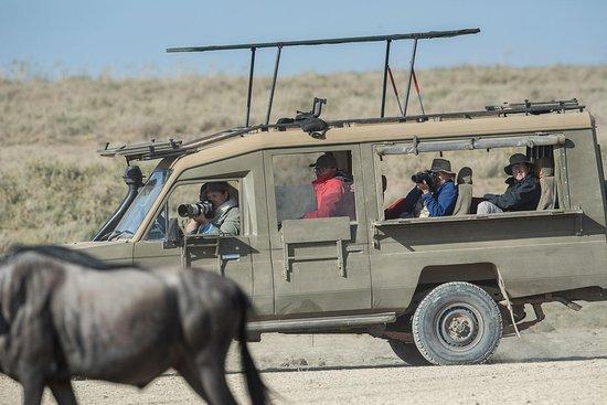 Topguides Safaris