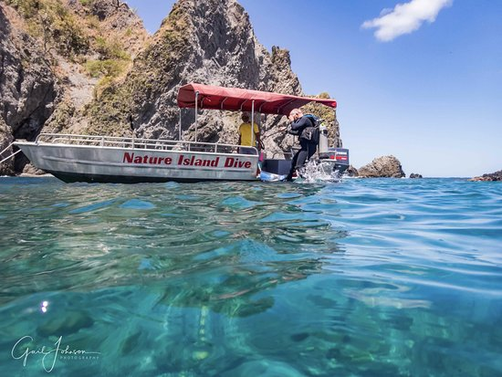 Nature Island Dive: Snorkelling off Scotts Head