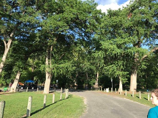 Cypress Bend Park