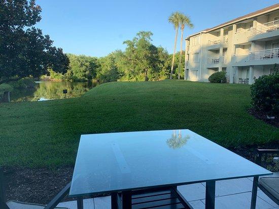 Sawgrass Marriott Golf Resort & Spa: Photos of the Villas