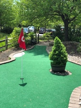 Newly carpeted hole #2 with white sand trip and evergreen obstacle.