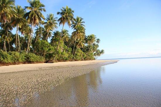 Bahia Ecoturismo
