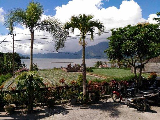 Entrance - Picture of Hotel Segara and Restaurant, Kedisan - Tripadvisor