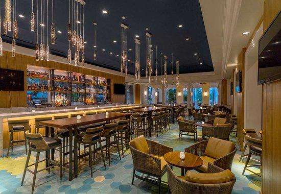 Hyatt Regency Coconut Point Resort and Spa: Bar Lounge