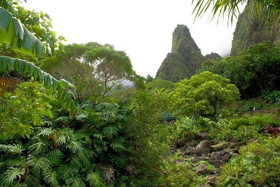 Maui's Best Hike