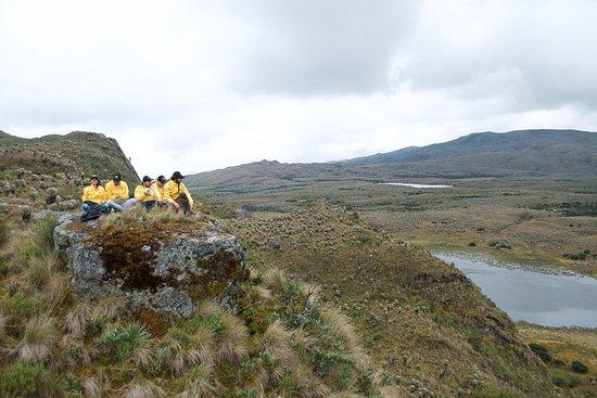 Tour di escursione alle brughiere di