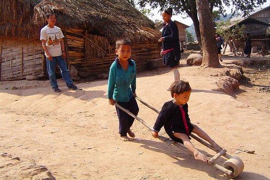 1 giorno di trekking - Lanten Community Forest a Luang Namtha