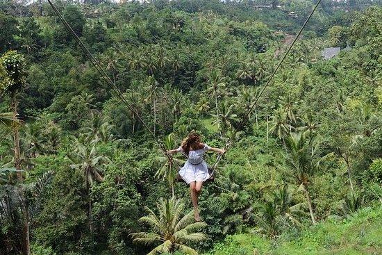 Bali Swing Tour Package
