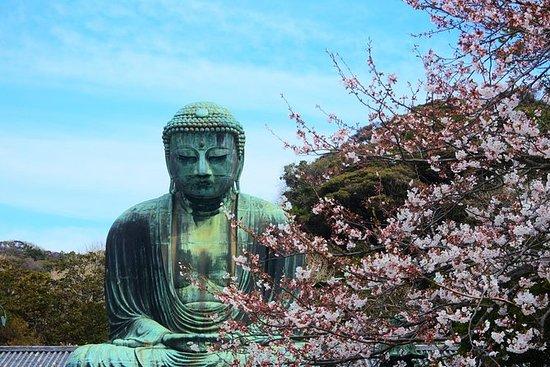 Kamakura & Enoshima - En dags busstur