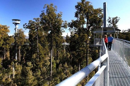 Utforsk Hokitika Gorge og Tree Top...