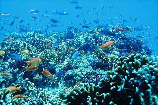 Snorkel en la laguna azul, playa...