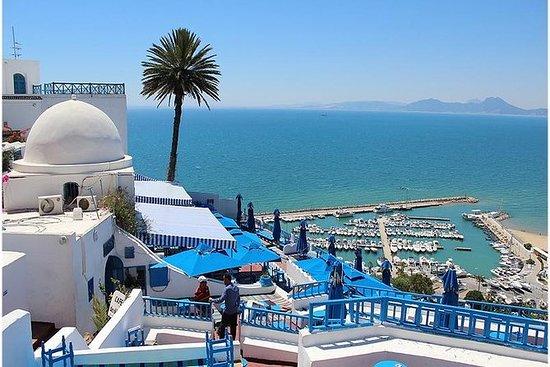Excursion of 1 day Tunis, Sidi...