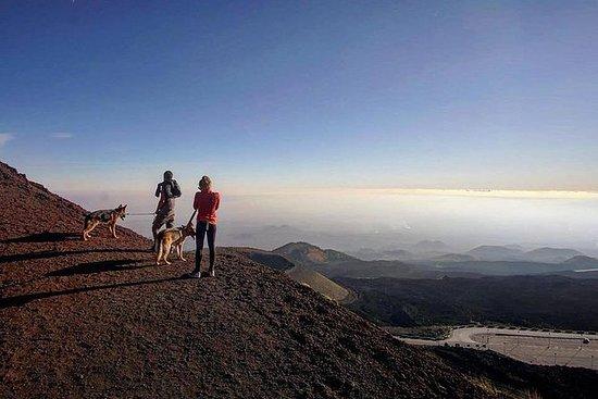 埃特納火山全景遊