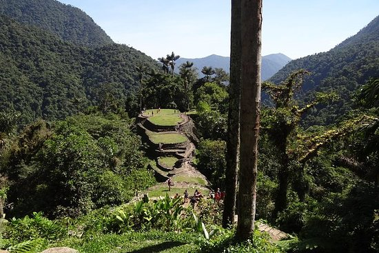 Walk for 4 days to Ciudad Perdida...