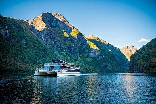 引导一日私人旅游 - 卑尔根到Nærøyfjorden和Flåm铁路