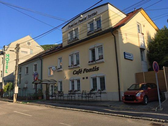 Trenčianske Teplice, Slovensko: Penzion Fontis Terrae