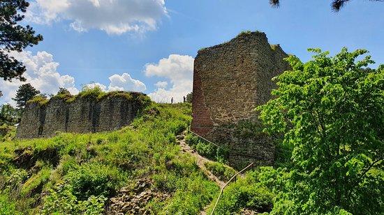 Zricenina hradu Selenburg /hrad Cvilin/