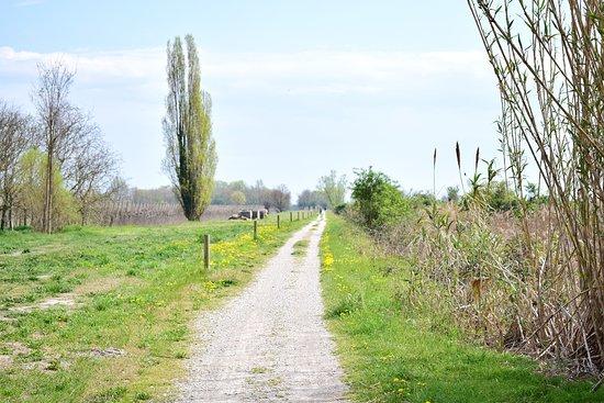 Greenway del Sile