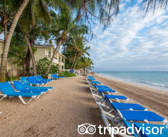 Beach at the Impressive Resort & Spa Punta Cana