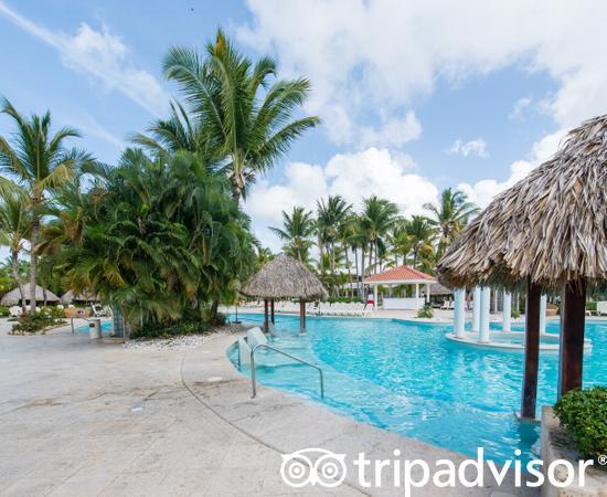 The Level Pool at the Melia Caribe Beach Resort