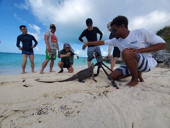 Explore Exuma  With Staniel Cay Adventures