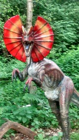 exhibit dinosaur