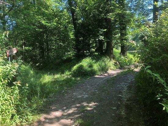 Sentiero delle Scarperie