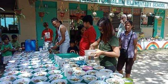 Mango  Bar's Feeding  Activity