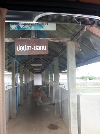 Phetchaburi Province, تايلاند: Khao Krueng Agricultural Learning Center, Phetchaburi Province  Is the royal initiative of Somdej Phra Thep  Inside there are many mixed agr