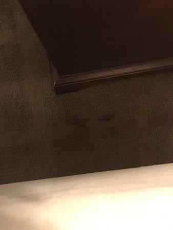 Bridgeport, MI: carpet