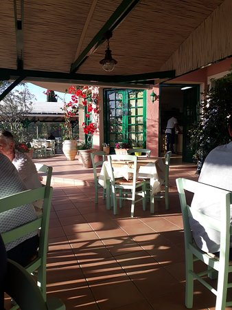 Phaedra Restaurant: Dolmadakia