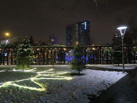 Havuzlu park