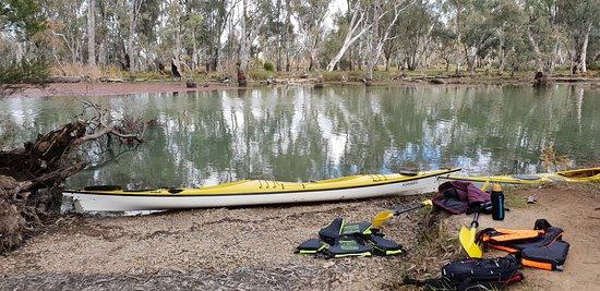 2.5hr Kayak Tour