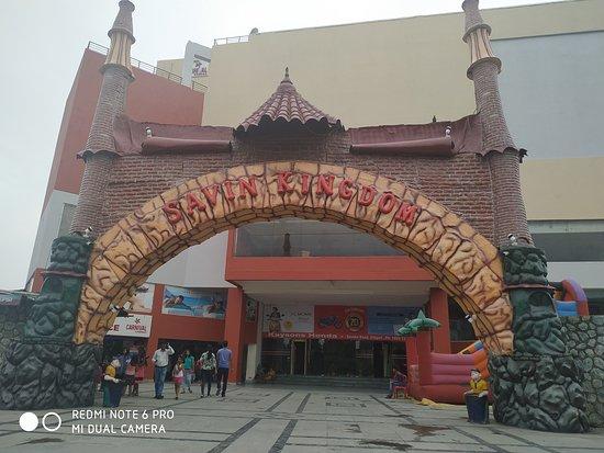 Savin Kingdom