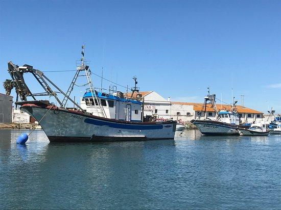 Fishing harbour at Isla Christina