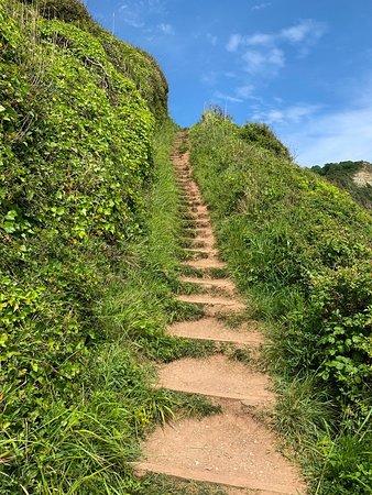 Some lovely steps!