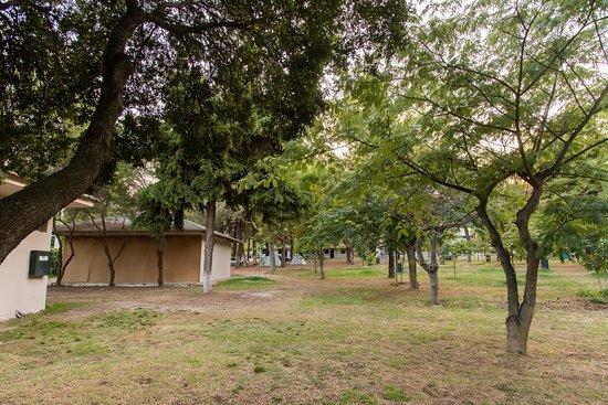 Camping Sylvia: Camping tent area