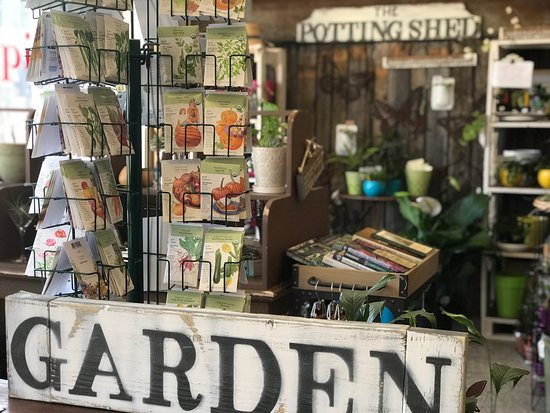 Berea, KY: Check out The Potting Shed's popup shop/booth while you're there for cool plants and pottery!