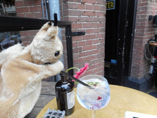 BD Squirrel enjoys the best Gin and Tonic EVER made the bartender's favorite way. So glad I took his recommendation!