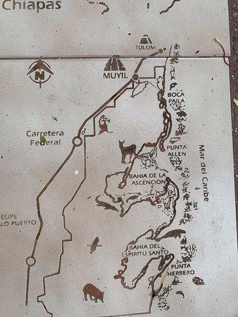 Muyil: Map