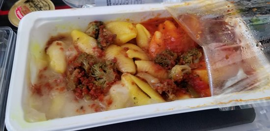 Awful food offered by Air Canada