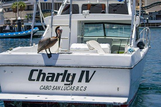 Charly Sportfishing
