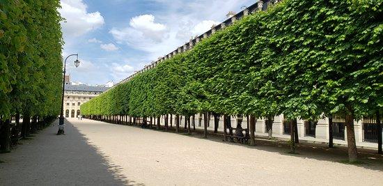 Garden area at the Palais Royal