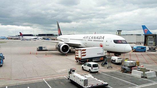 Air Canada: the plane