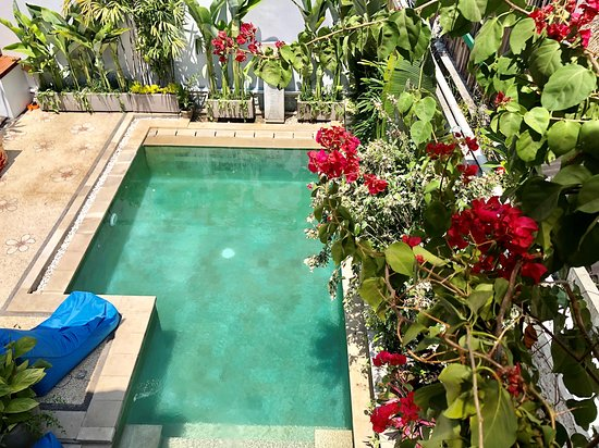 Private outdoor swimming pool where you can relax with secluded garden setting. Ideal for families or group of friends.
