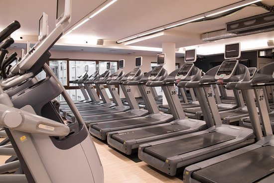Form Factory Fitness Center Karlín: Cardio