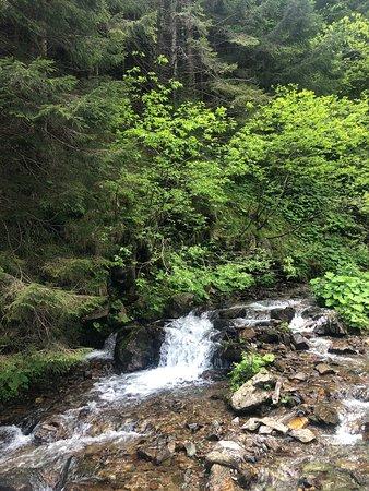 Amazing trail and waterfall