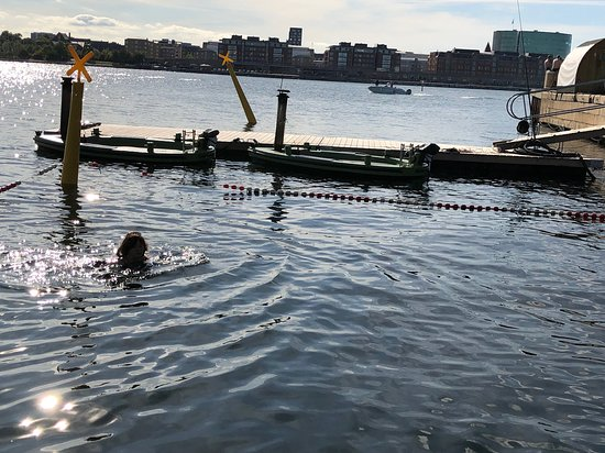 CopenHot HotDays: The harbour pool to cool off in