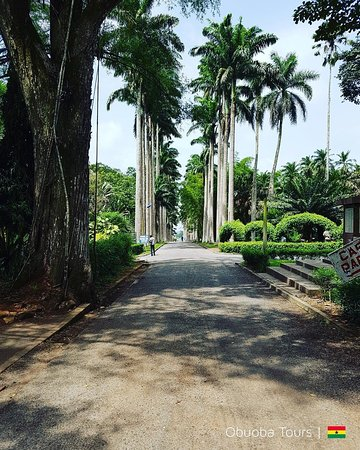 """Explore Ghana with Us to get the best experience with all these Tourist sites in Ghana. National Park, Fort and Castle, Water Falls , Botanical Garden, Market, Beaches,night life in Ghana ,We offer you a great experience from pick up to drop off. Have the feel of our saying """"Don't just pass through Ghana but let Ghana pass through you"""". If you don't find what you are looking for on our website don't worry we have room for customize itineraries, Your vary own interest of what you want to do."""