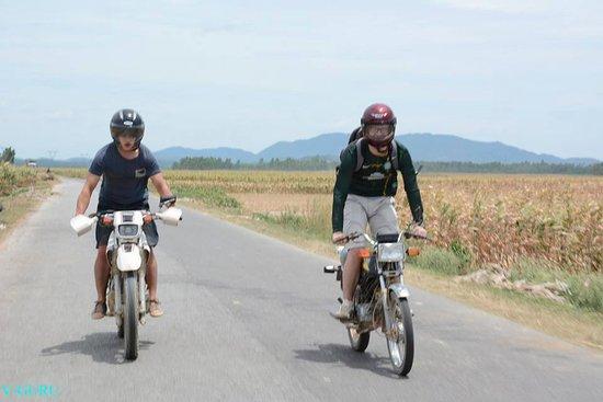 Pumat Natural Park - Dong Du Farm Stay